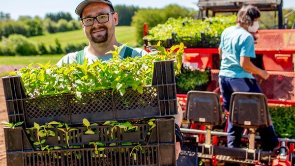Ein Mann in Arbeitskleidung steht auf einem Feld. Er trägt Kisten voller Pflanzen und lächelt in die Kamera.